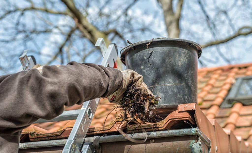 Nettoyage gouttieres